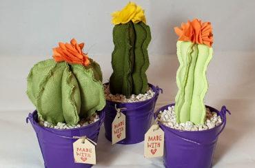 Cactus tessuto