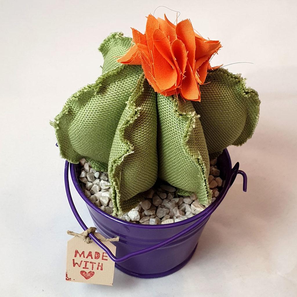 cactus tessuto secchiello latta